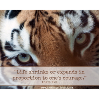 """Life shrinks or expands in proportion to one's courage."" -Anais Nin"