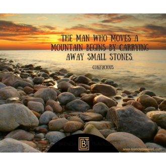 """The man who moves a mountain begins by carrying away small stones."" -Confucious"